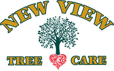North Franklin CT Tree Care, Trimming & Removal | New View Tree Care LLC